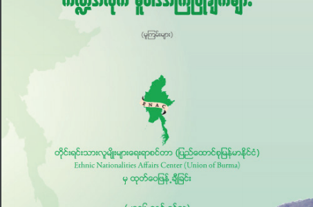 Sectoral Policy Recommendations for Building Future Federal Democratic Union (Burmese Version)